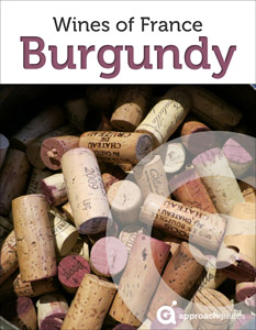 Cover_wine_france_burgundy_233x300