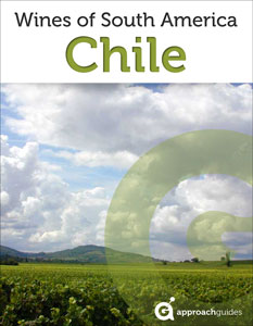 ag-cover-wines-chile-233x300