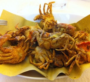 A Venetian speciaity, moeche: fried softshell crabs